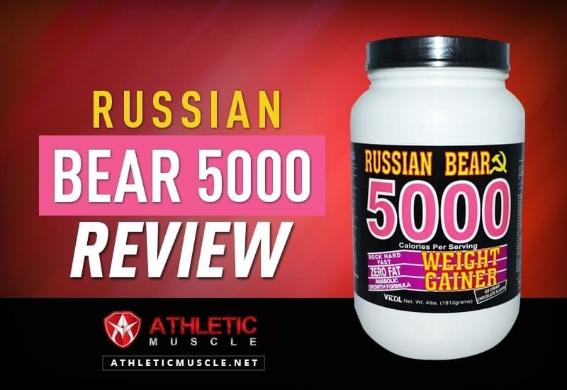 Vitol Russian Bear 5000 Review